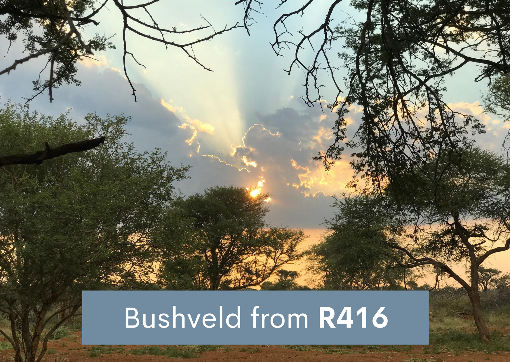 Bushveld accommodation